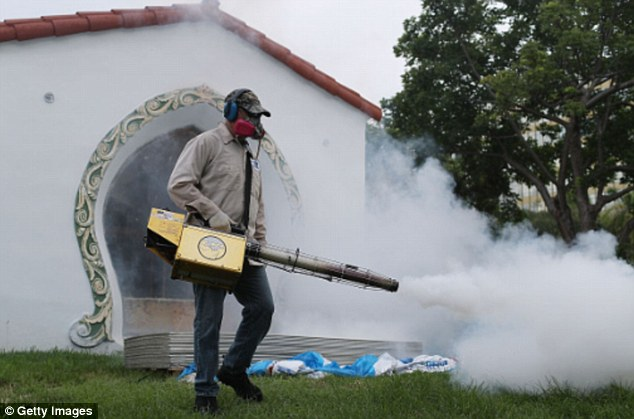 The only known way to cut the Zika spread is to spray outbreak zones like Miami (pictured)