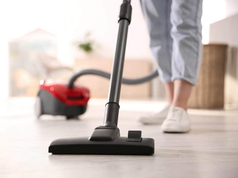 Woman vacuuming dead cluster flies