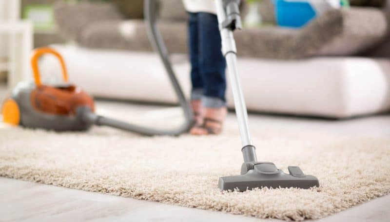 Vacuuming the carpet after a day of letting the salt sit in it