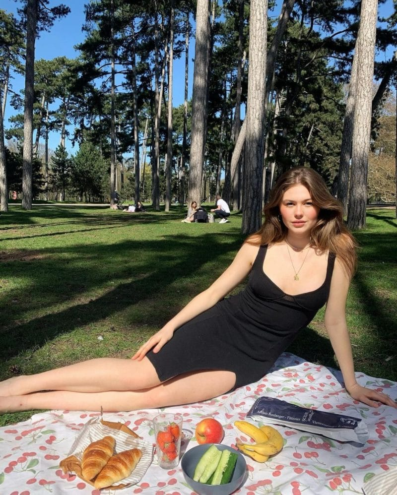 Picnics are safer from insects with the right precautions